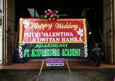 Bunga Papan Makassar
