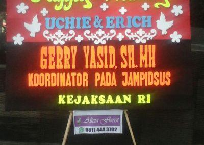 Bunga Papan di Makassar